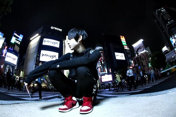 banvox_2015_apic_2