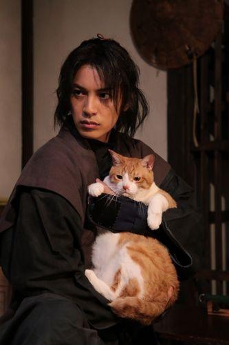 猫忍 特写4