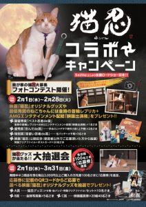 「猫忍」×「イオンペット」コラボポスター