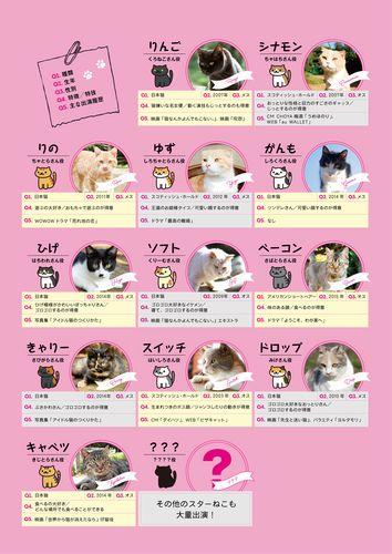 cat_p