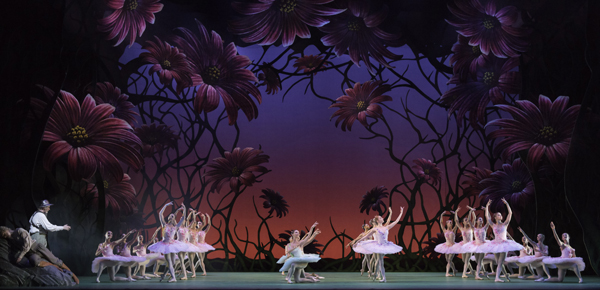DON QUIXOTE ; Music by Ludwig Minkus ; Choreography by Carlos Acosta ; Original choreography by Marius Petipa ; Artists from The Royal Ballet ; At the Royal Opera House, London, UK ; 27 September 2013 ; Credit: Johan Persson / Royal Opera House / ArenaPAL ;