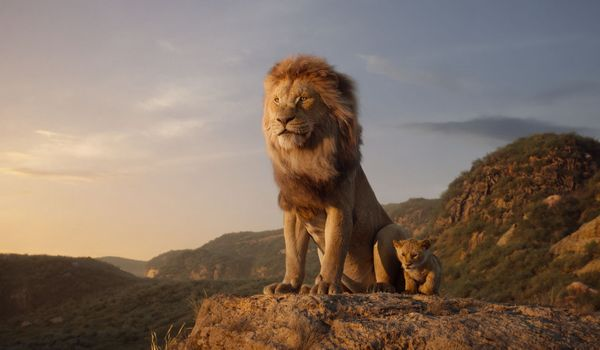 "THE LION KING - Featuring the voices of James Earl Jones as Mufasa, and JD McCrary as Young Simba, Disney's ""The Lion King"" is directed by Jon Favreau. In theaters July 29, 2019. © 2019 Disney Enterprises, Inc. All Rights Reserved."