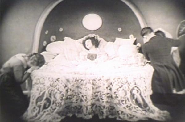 椿姫モノクロ(1921年版) (2)