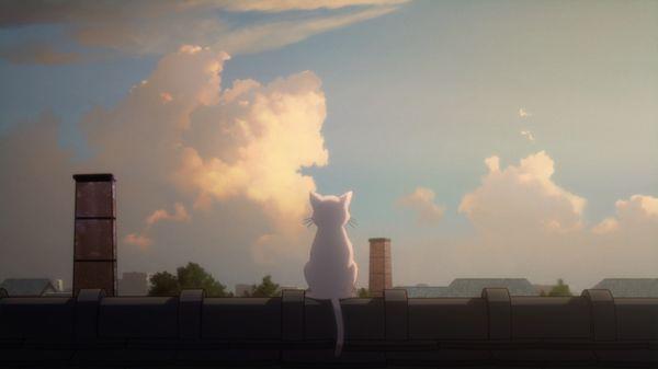 『泣きたい私は猫をかぶる』主題歌「花に亡霊」MV画像①