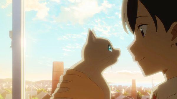 泣き たい 私 は 猫 を かぶる 小説