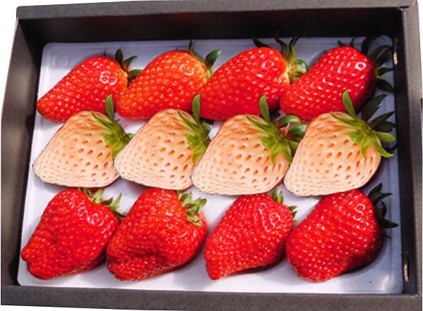 02.白苺と大粒イチゴ2〜3種食べ比べセット
