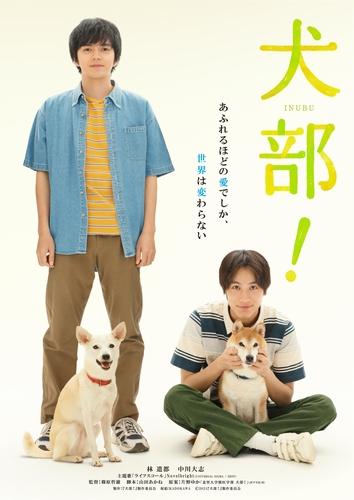『犬部!』ティザービジュアル(最終)
