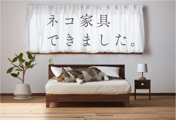 ネコ家具1